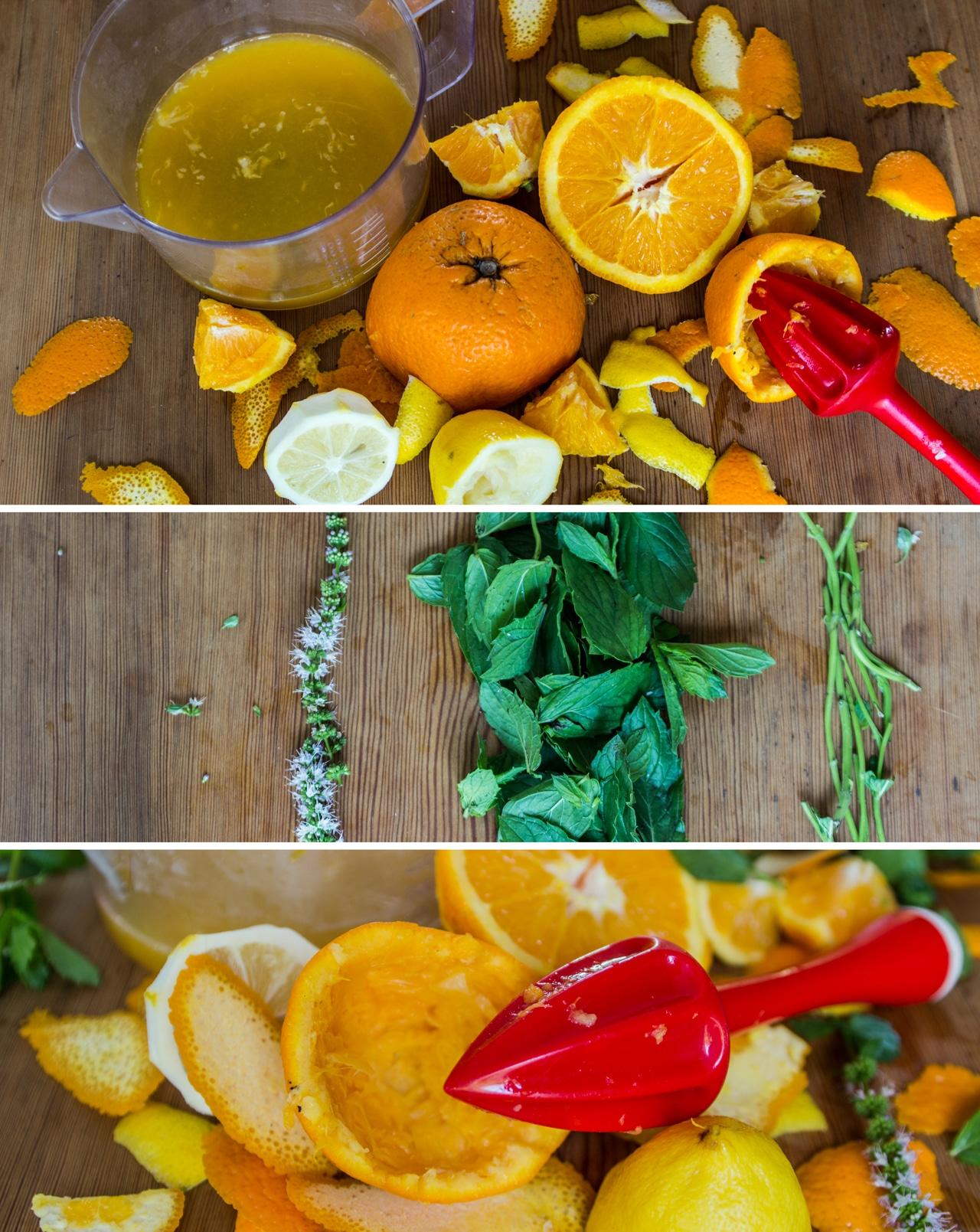 Suroviny na přípravu limonády
