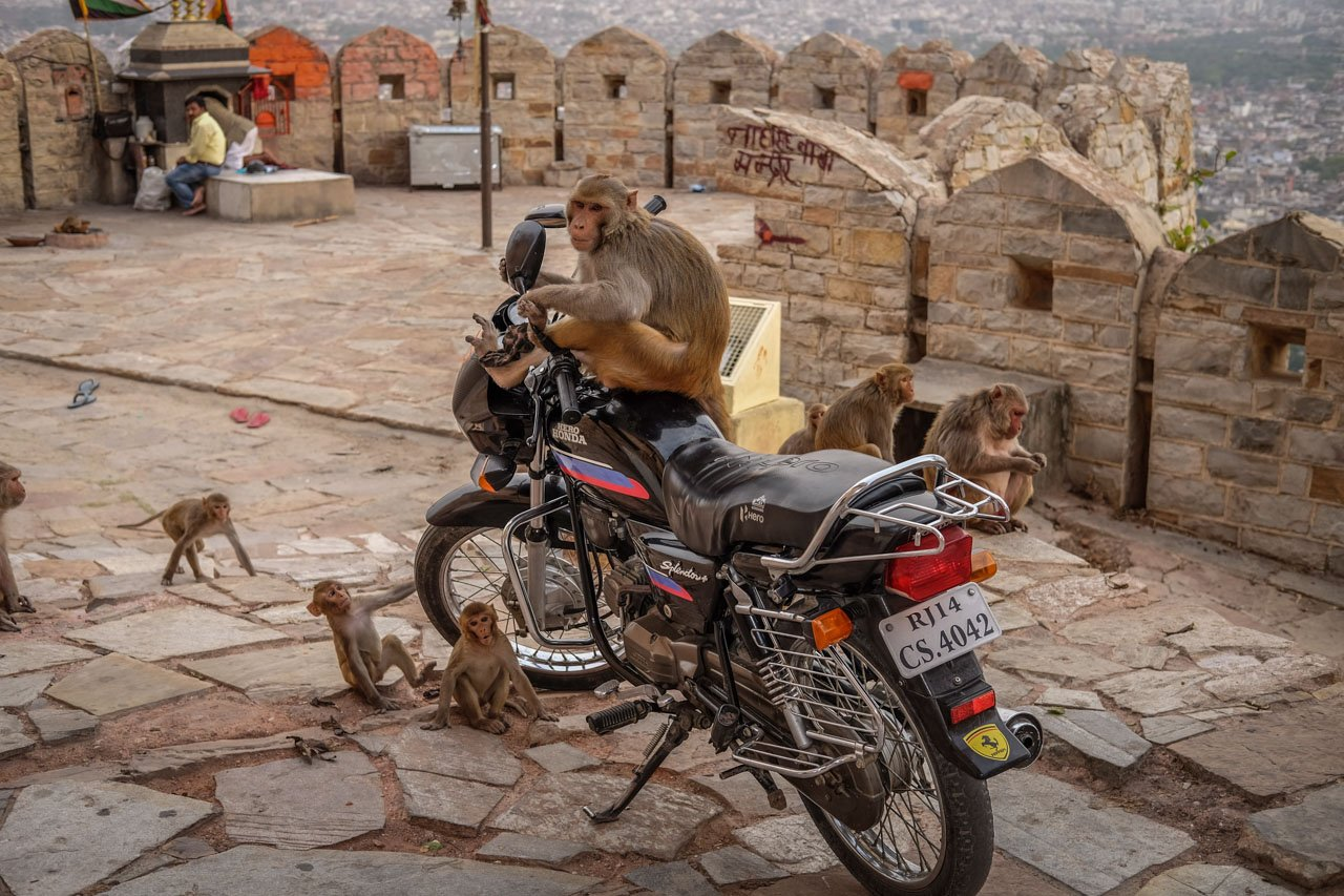 Doprava po Indii