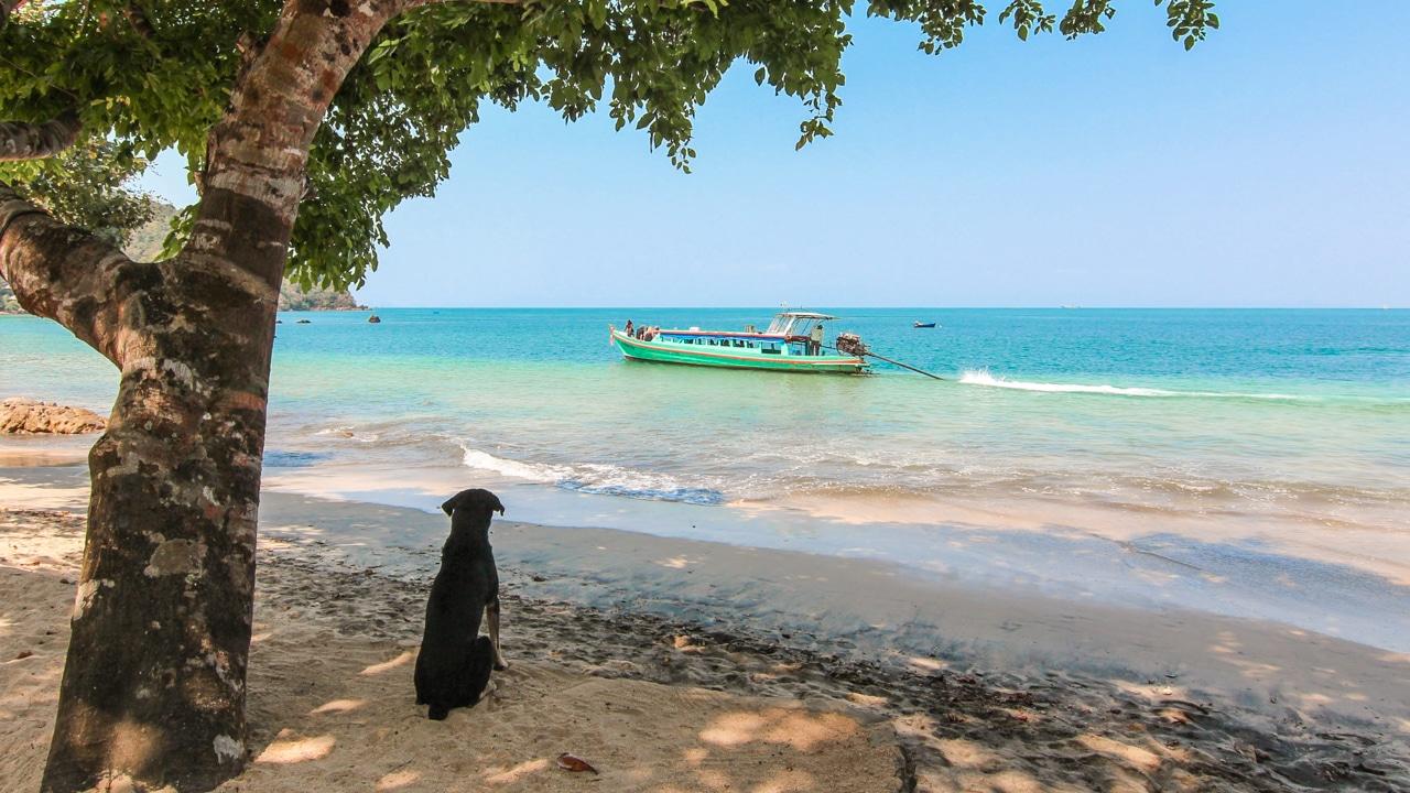 Jižní Thajsko – tropický ráj, divoká džungle a nezapomenutelné večírky